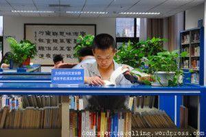 Estudiante chino leyendo en la Shanghai Library